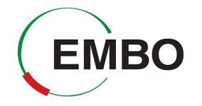 Úspěch v kompetitivní soutěži EMBO Fellowship